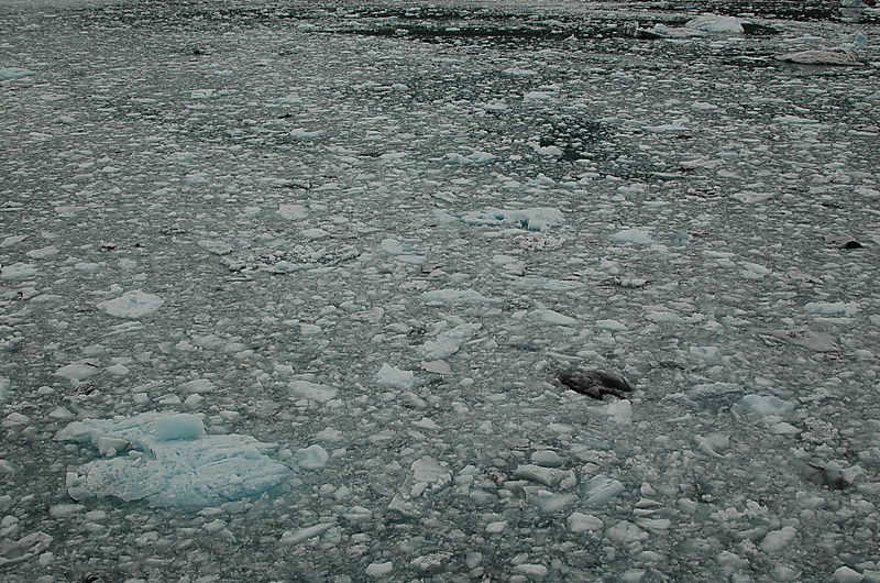 Alaska-08 437