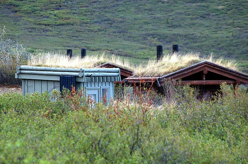 Alaska-08 516_edited-1
