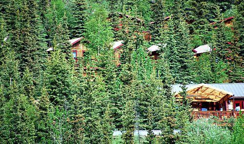 Alaska-08 472_edited-1