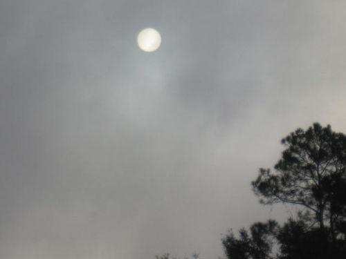 Morning sun 002