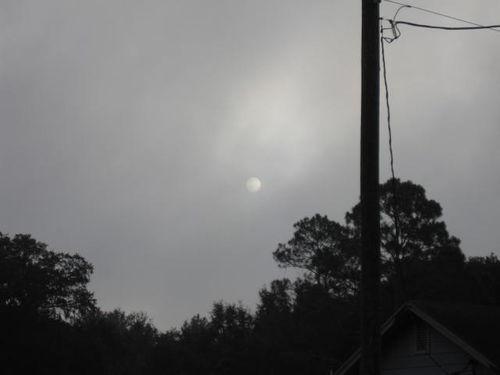 Morning sun 001
