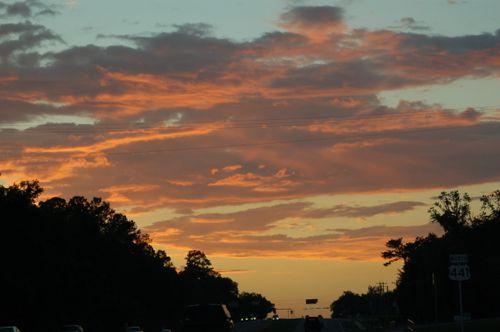 Gainesville 032