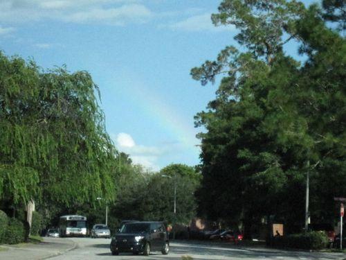 Rainbows 012