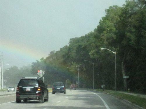 Rainbows 007