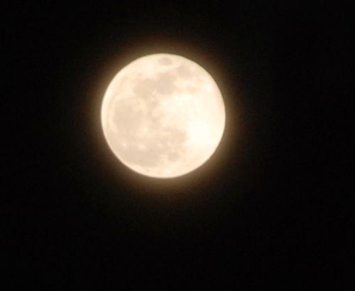 Blue moon 009
