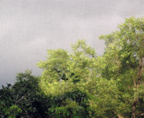 Storm 010_picnik