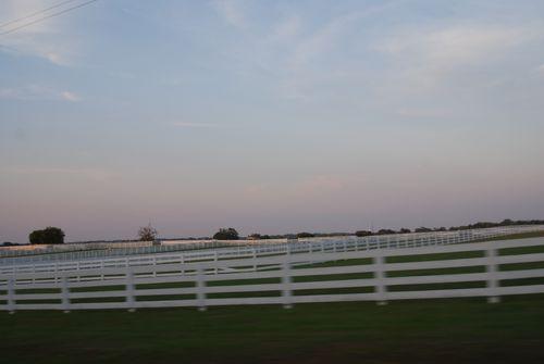 White fence 007