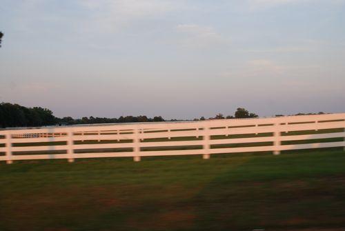 White fence 011