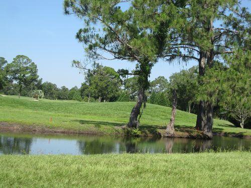 Golf 020