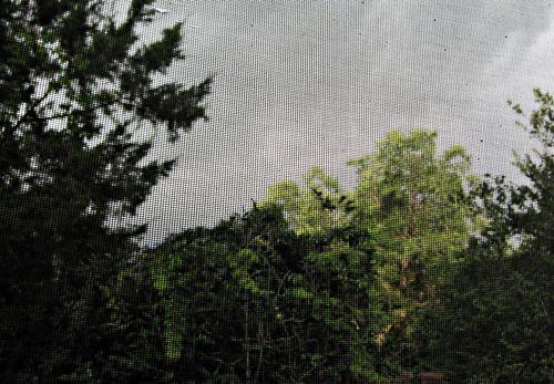 Storm 011_picnik