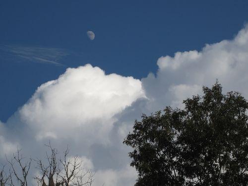 Clouds bw 005