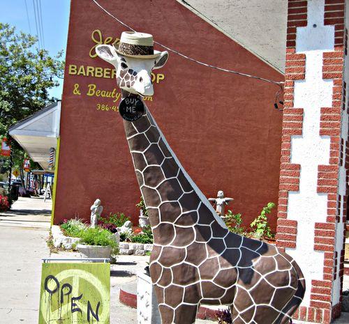 Giraffe 002_picnik