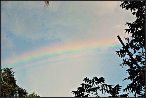 Rainbow 032