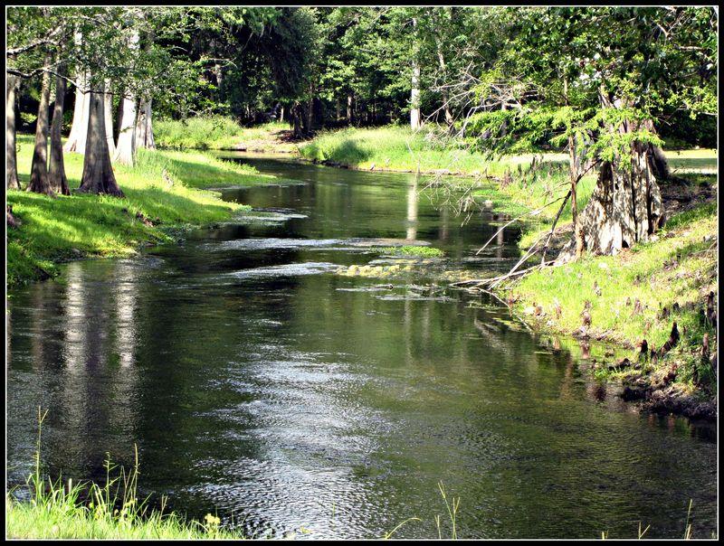 River 005