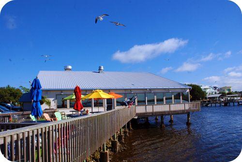 Sea gulls 045_picnik