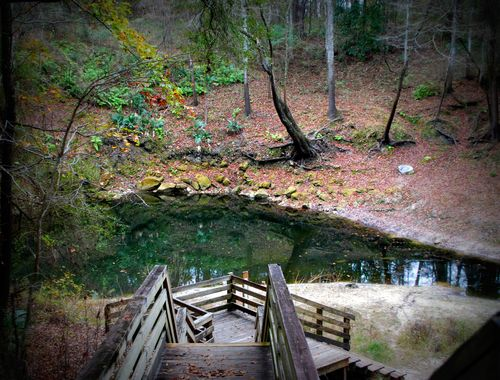 Falmouth springs 006