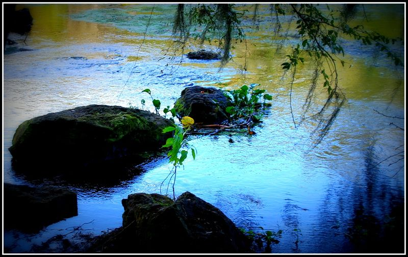 High springs 012