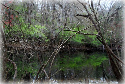 Spring green 003