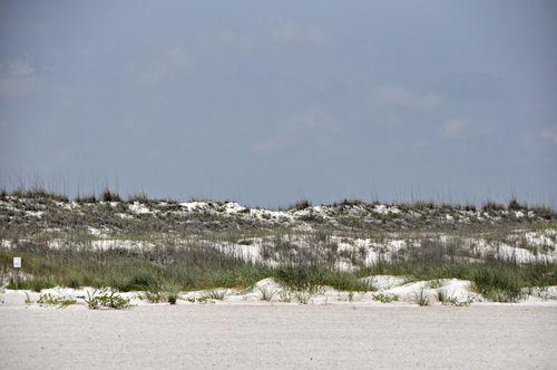 Beach 040