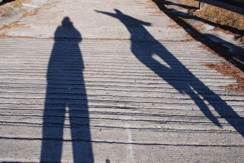 Shadows 004